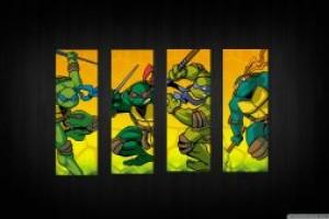 忍者神龟有喜欢的木有~感觉超帅