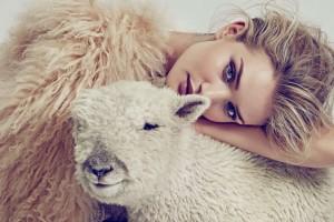 美女和羊驼