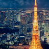 夜晚的东京铁塔