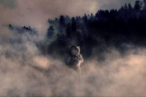 森林里的宇航员