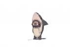 可爱的鲨鱼
