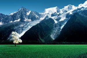 雪山和草原