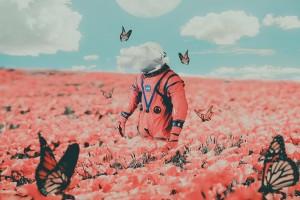 蝴蝶宇航员