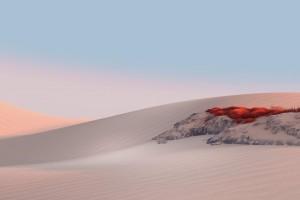 沙漠里的一片红
